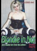 1201 Blondie In Not