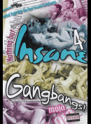 1282 Nothing But Insane Gangbangs (4 timer)