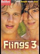 5394 Flings 3