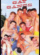 5407 Gay Gangs